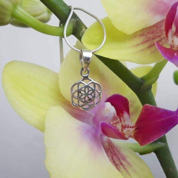 Silver seed pendant - Omyoki